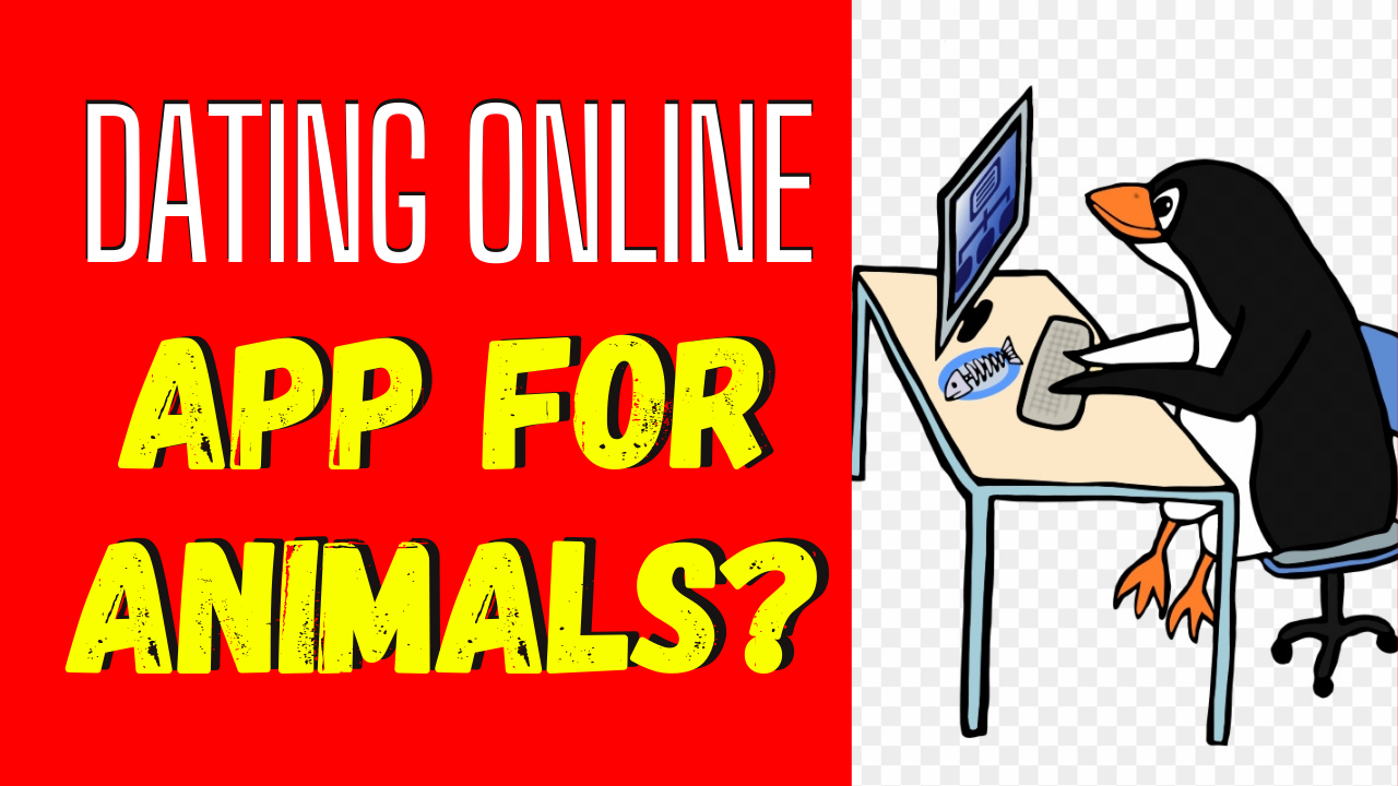 4 Animals Who Have Tried Online Dating